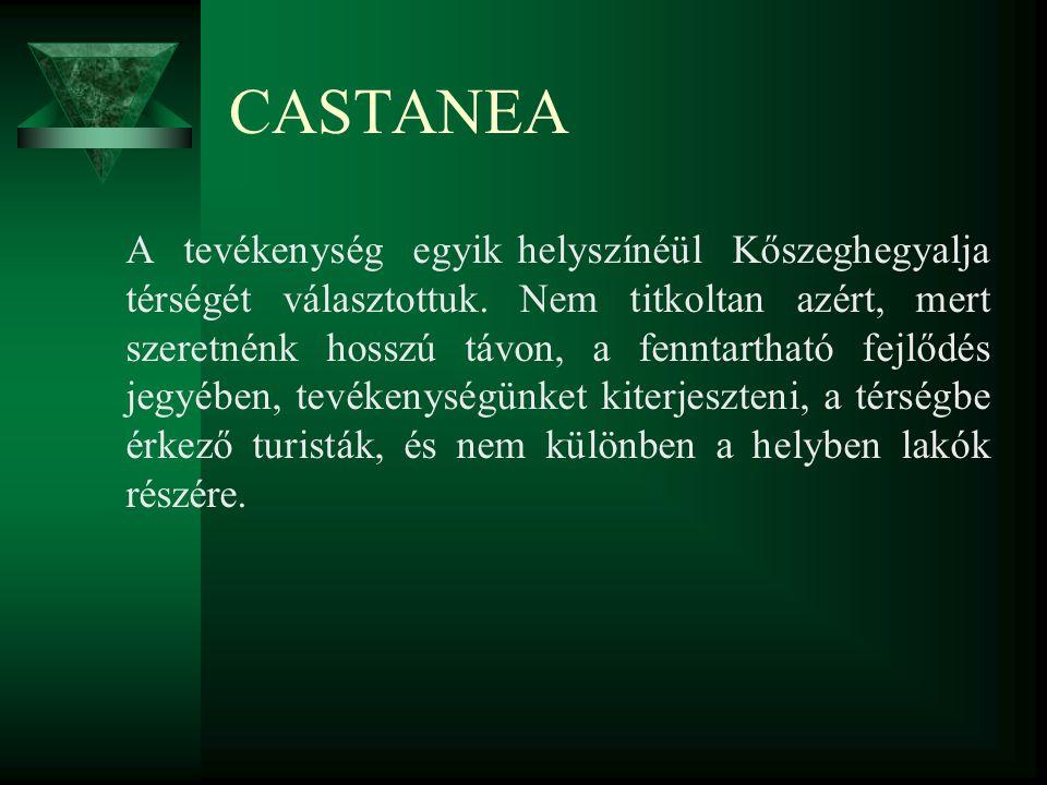 CASTANEA A tevékenység egyik helyszínéül Kőszeghegyalja térségét választottuk. Nem titkoltan azért, mert szeretnénk hosszú távon, a fenntartható fejlő