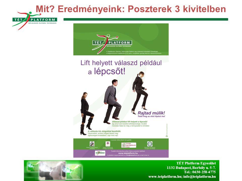 TÉT Platform Egyesület 1132 Budapest, Borbély u. 5-7. Tel.: 0630-258-4775 www.tetplatform.hu; info@tetplatform.hu Mit? Eredményeink: Poszterek 3 kivit