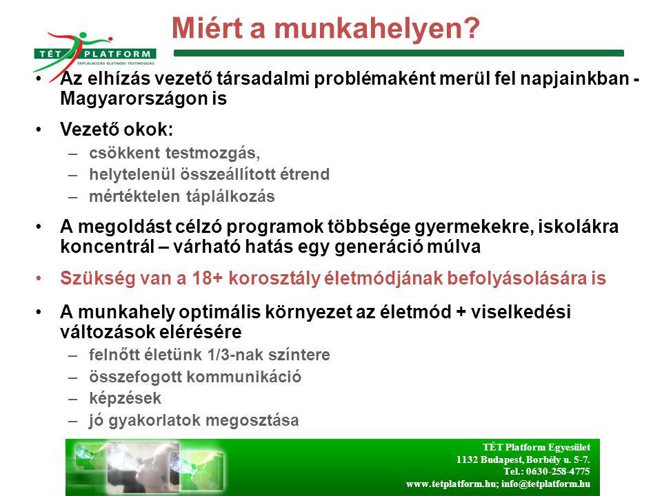 TÉT Platform Egyesület 1132 Budapest, Borbély u. 5-7. Tel.: 0630-258-4775 www.tetplatform.hu; info@tetplatform.hu Miért a munkahelyen? Az elhízás veze