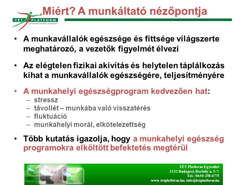 TÉT Platform Egyesület 1132 Budapest, Borbély u. 5-7. Tel.: 0630-258-4775 www.tetplatform.hu; info@tetplatform.hu Miért? A munkáltató nézőpontja A mun