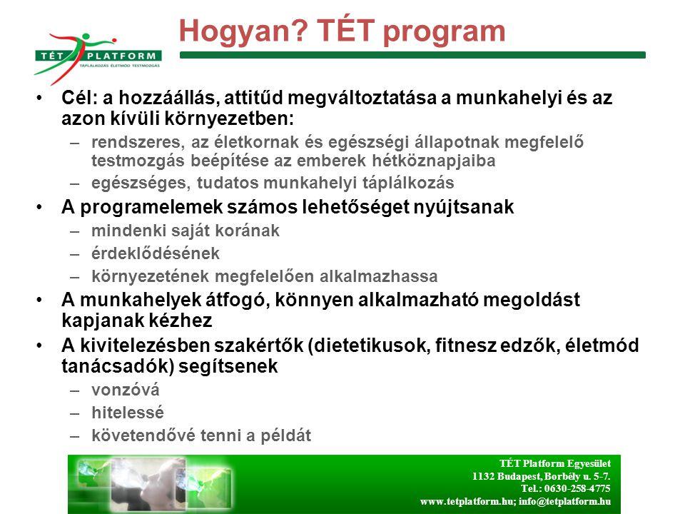 TÉT Platform Egyesület 1132 Budapest, Borbély u. 5-7. Tel.: 0630-258-4775 www.tetplatform.hu; info@tetplatform.hu Hogyan? TÉT program Cél: a hozzáállá