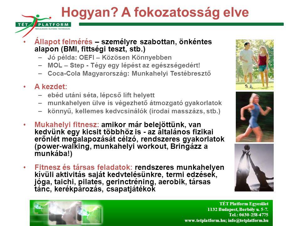 TÉT Platform Egyesület 1132 Budapest, Borbély u. 5-7. Tel.: 0630-258-4775 www.tetplatform.hu; info@tetplatform.hu Hogyan? A fokozatosság elve Állapot