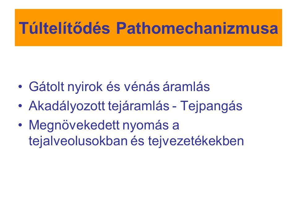 Visszatérő mastitis Kezelés: Tenyésztés után 14 napos antibiotikus kezelés Krónikus esetben a laktáció idejére alacsony dózisú antibiotikus kezelés szóbajöhet Mechanikai okok kiküszöbölése Túl nagy mennyiségű tejtermelés- szoptatás alkalmanként vagy legalább 4 órán át egy mellből, etetések között sz.e.