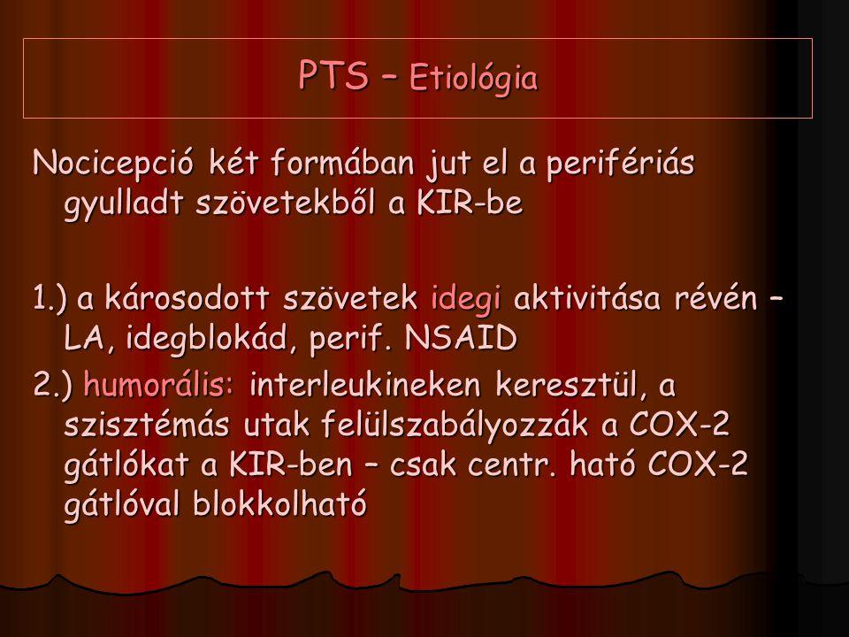 PTS – Etiológia Nocicepció két formában jut el a perifériás gyulladt szövetekből a KIR-be 1.) a károsodott szövetek idegi aktivitása révén – LA, idegb