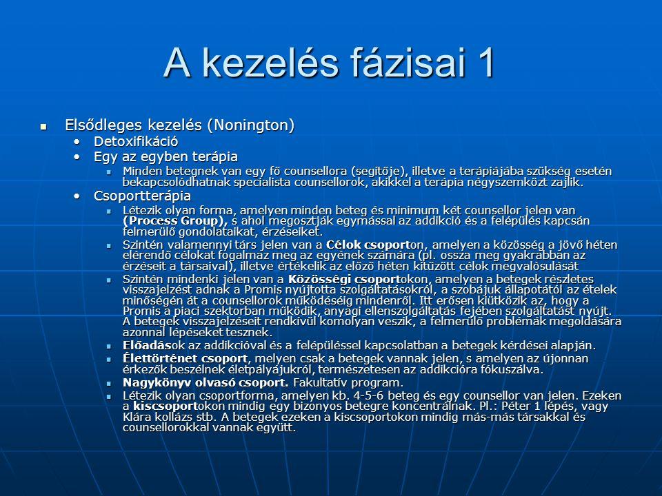 A kezelés fázisai 1 Elsődleges kezelés (Nonington) Elsődleges kezelés (Nonington) DetoxifikációDetoxifikáció Egy az egyben terápiaEgy az egyben terápi