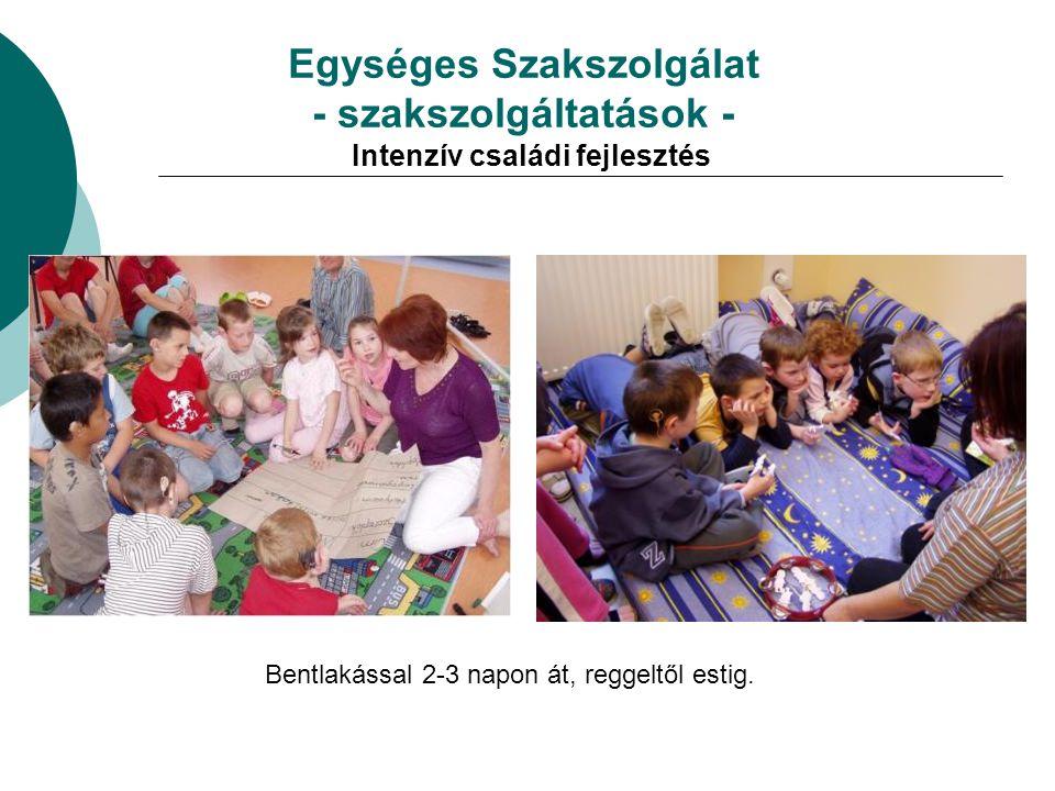 Egységes Szakszolgálat - szakszolgáltatások - Intenzív családi fejlesztés Bentlakással 2-3 napon át, reggeltől estig.
