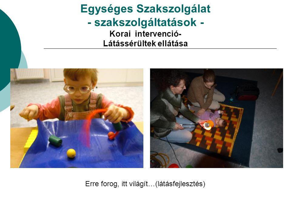 Az intézmény szakmai szolgáltatásai  Intézménybemutató – hospitációs tréning - óralátogatások  Intézmények közötti szakmai munkaközösségek, szakmai műhelyek szervezése, működtetése  Konferenciák rendezése  Érzékenyítő programok  Védőnők, gyermekorvosok felkészítése, tájékoztatása  Fecsketábor  Hallgatói gyakorlóhely (KE, ELTE BGGYK,POTE)  Akkreditált tanfolyamok, tréningek  Jó gyakorlatok