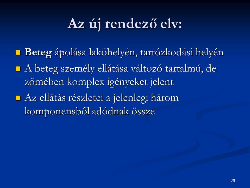 29 Az új rendező elv: Beteg ápolása lakóhelyén, tartózkodási helyén Beteg ápolása lakóhelyén, tartózkodási helyén A beteg személy ellátása változó tar