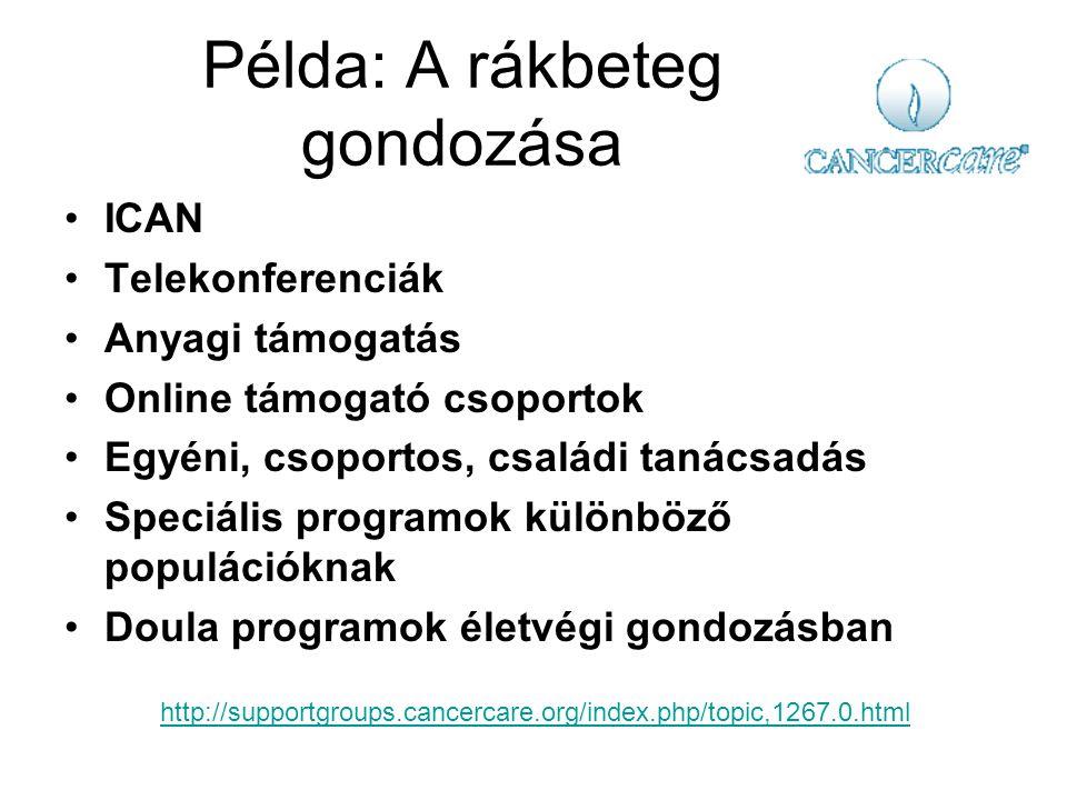 Példa: A rákbeteg gondozása ICAN Telekonferenciák Anyagi támogatás Online támogató csoportok Egyéni, csoportos, családi tanácsadás Speciális programok