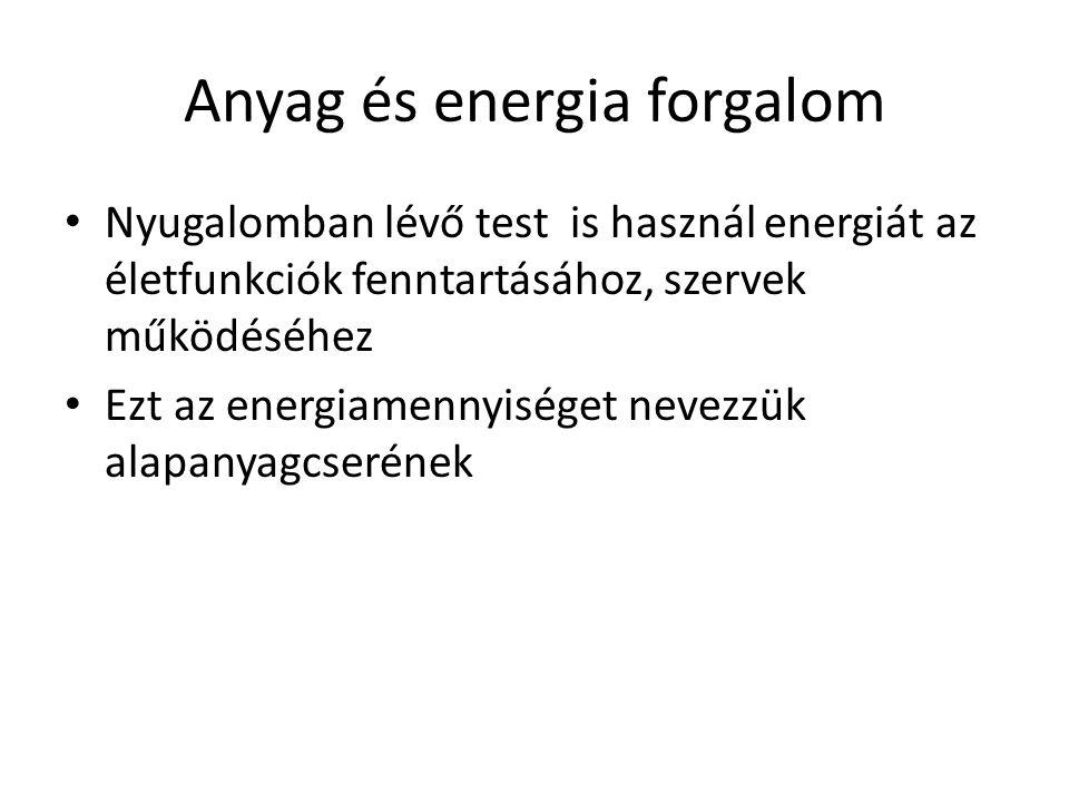 Anyag és energia forgalom Nyugalomban lévő test is használ energiát az életfunkciók fenntartásához, szervek működéséhez Ezt az energiamennyiséget neve