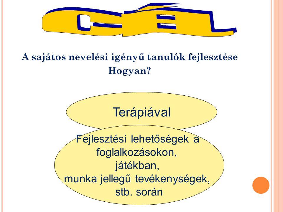 H OGYAN VALÓSUL MEG AZ EGYÉNI FEJLESZTÉS .1. pedagógiai státusz (pedagógiai diagnózis) 2.
