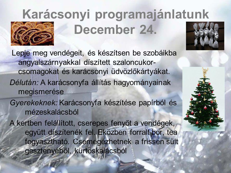 Egész napos családi és csoportos programok a tél és az ünnepek jegyében  Furfangos népi játékok kézm ű ves vásárral egybekötve  Betlehemes  Karácsonyi zenés mesejáték szabadtéren t ű znél melegedéssel, friss meleg kürtöskaláccsal  Világ Karácsonya avagy mindenki másképp ünnepel: Egyes országok kultúrájának jegyében megtartott karácsonyi ünnepség  Karácsonyi koncert: különböz ő stílusú el ő adók igény szerint (egyházi zene, hangszeres el ő adók, hazai énekesek)