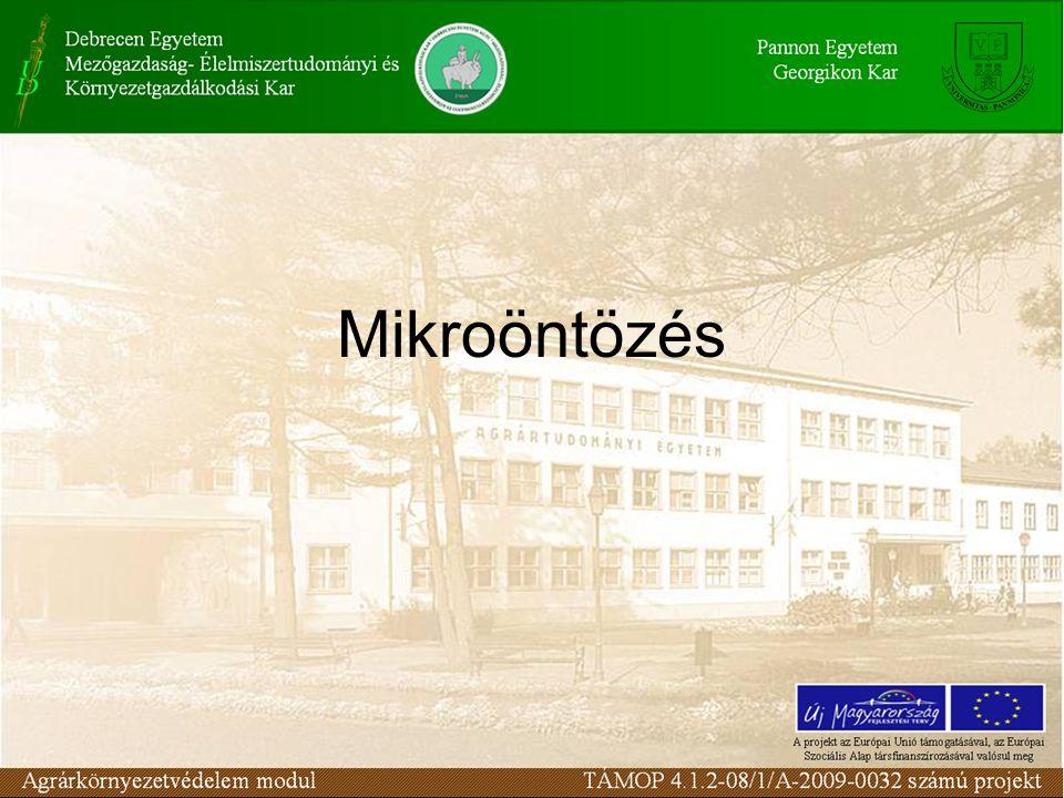 Mikroöntözés