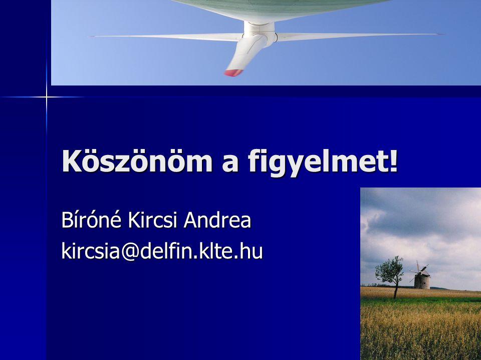 Köszönöm a figyelmet! Bíróné Kircsi Andrea kircsia@delfin.klte.hu