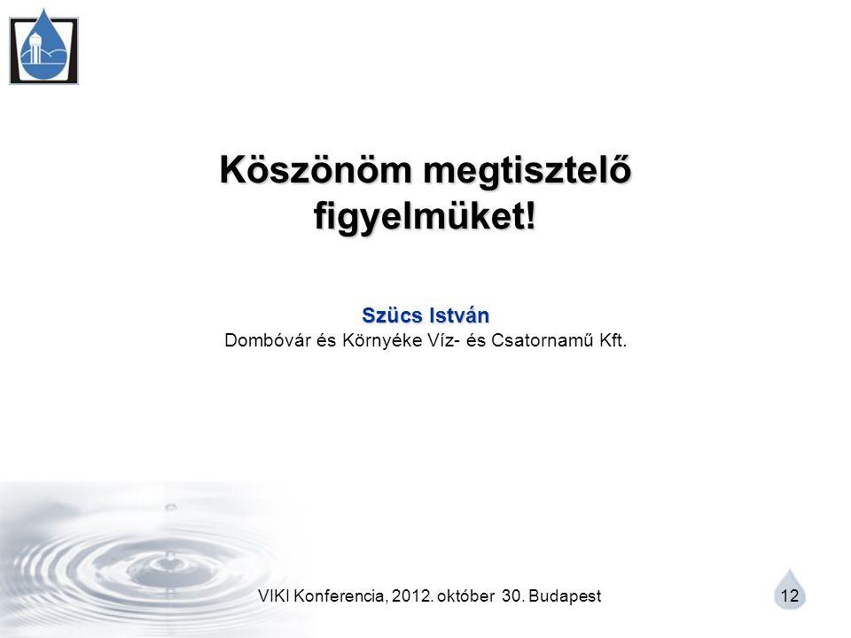 VIKI Konferencia, 2012. október 30. Budapest 12 Köszönöm megtisztelő figyelmüket.