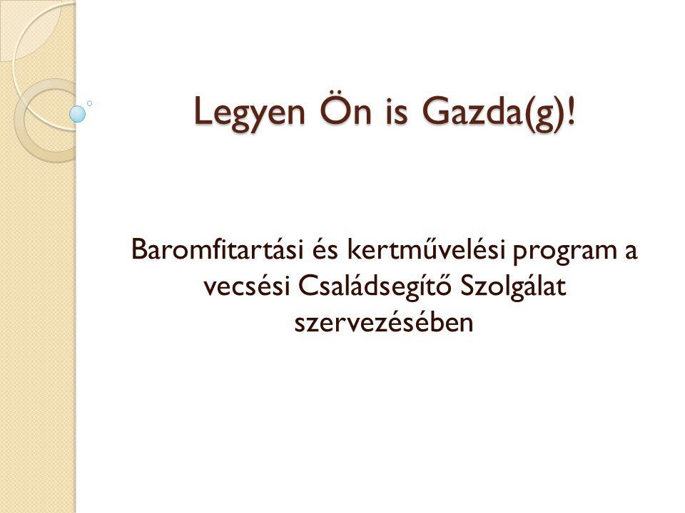 Legyen Ön is Gazda(g)! Baromfitartási és kertművelési program a vecsési Családsegítő Szolgálat szervezésében