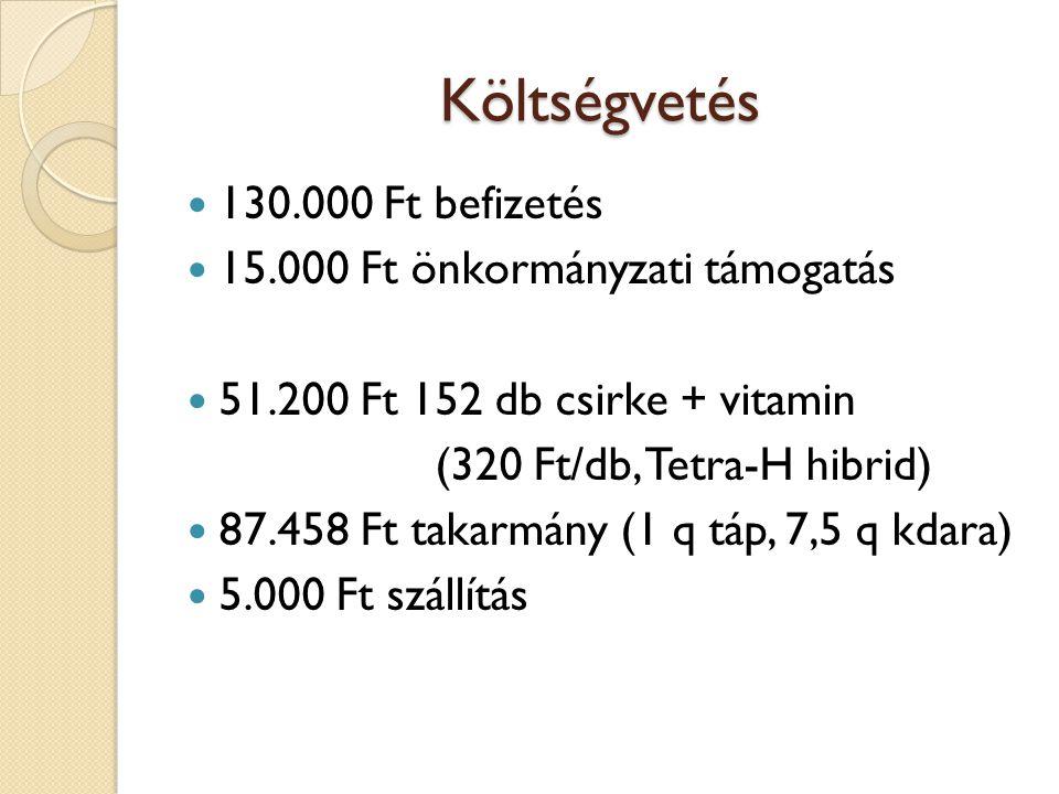 Költségvetés 130.000 Ft befizetés 15.000 Ft önkormányzati támogatás 51.200 Ft 152 db csirke + vitamin (320 Ft/db, Tetra-H hibrid) 87.458 Ft takarmány (1 q táp, 7,5 q kdara) 5.000 Ft szállítás