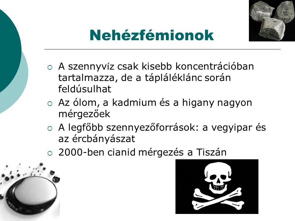 Nehézfémionok  A szennyv íz csak kisebb koncentrációban tartalmazza, de a tápláléklánc során feldúsulhat  Az ólom, a kadmium és a higany nagyon mérgezőek  A legfőbb szennyezőforrások: a vegyipar és az ércbányászat  2000-ben cianid mérgezés a Tiszán