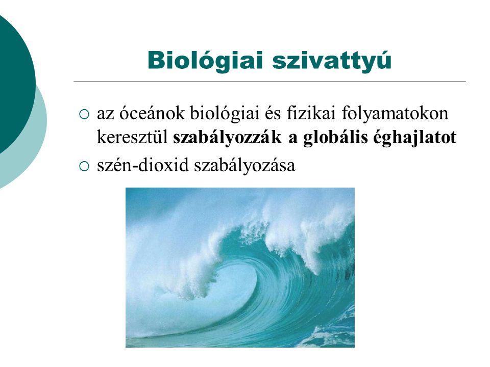 Biológiai szivattyú  az óceánok biológiai és fizikai folyamatokon keresztül szabályozzák a globális éghajlatot  szén-dioxid szabályozása