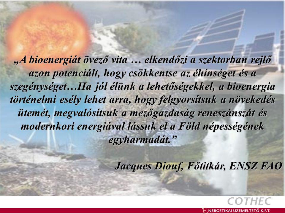 """""""A bioenergiát övező vita … elkendőzi a szektorban rejlő azon potenciált, hogy csökkentse az éhínséget és a szegénységet…Ha jól élünk a lehetőségekkel, a bioenergia történelmi esély lehet arra, hogy felgyorsítsuk a növekedés ütemét, megvalósítsuk a mezőgazdaság reneszánszát és modernkori energiával lássuk el a Föld népességének egyharmadát. Jacques Diouf, Főtitkár, ENSZ FAO Jacques Diouf, Főtitkár, ENSZ FAO"""