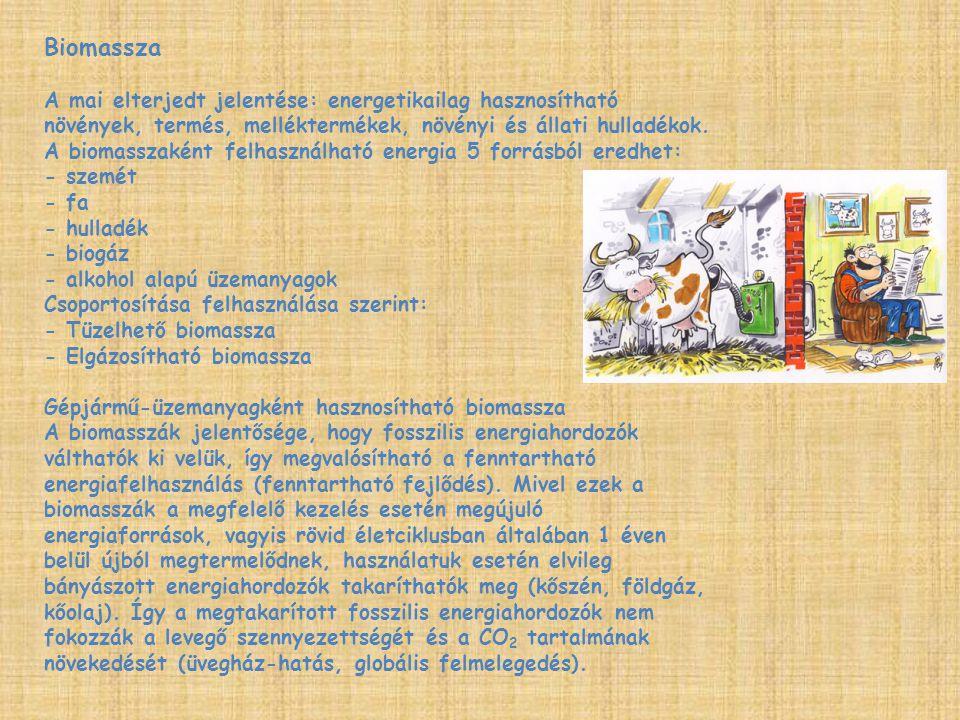 Biomassza A mai elterjedt jelentése: energetikailag hasznosítható növények, termés, melléktermékek, növényi és állati hulladékok. A biomasszaként felh
