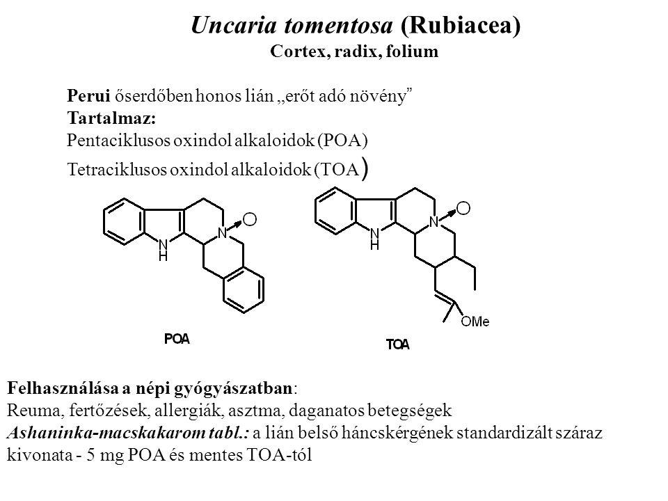 """Uncaria tomentosa (Rubiacea) Cortex, radix, folium Perui őserdőben honos lián """"erőt adó növény """" Tartalmaz: Pentaciklusos oxindol alkaloidok (POA) Tet"""