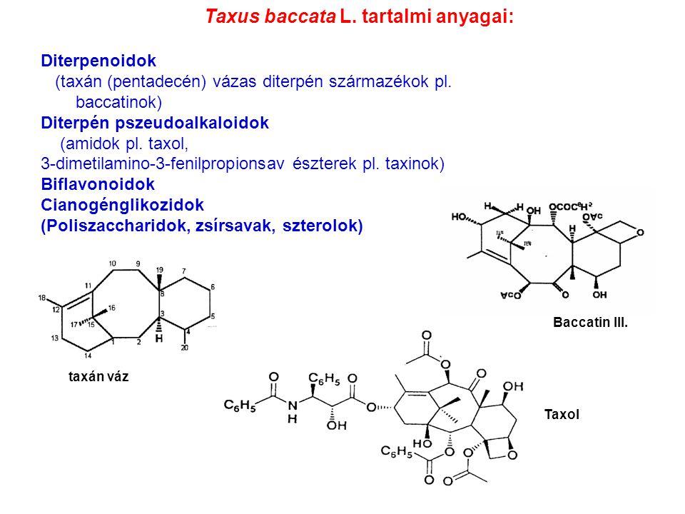 Taxus baccata L. tartalmi anyagai: Diterpenoidok (taxán (pentadecén) vázas diterpén származékok pl. baccatinok) Diterpén pszeudoalkaloidok (amidok pl.