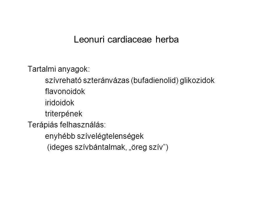 Tartalmi anyagok: szívreható szteránvázas (bufadienolid) glikozidok flavonoidok iridoidok triterpének Terápiás felhasználás: enyhébb szívelégtelensége