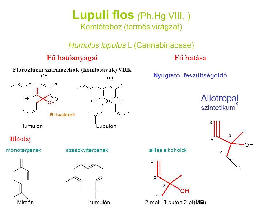 Lupuli flos (Ph.Hg.VIII. ) Komlótoboz (termős virágzat) Humulus lupulus L (Cannabinaceae) Fő hatóanyagai Floroglucin származékok (komlósavak) VRK Humu