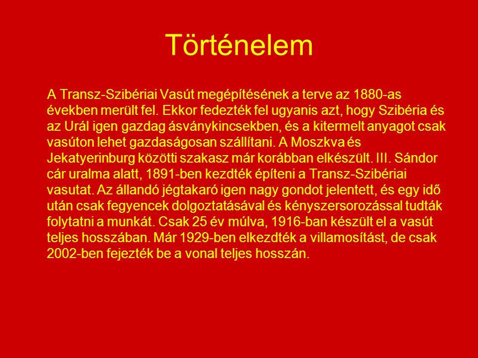 Történelem A Transz-Szibériai Vasút megépítésének a terve az 1880-as években merült fel. Ekkor fedezték fel ugyanis azt, hogy Szibéria és az Urál igen