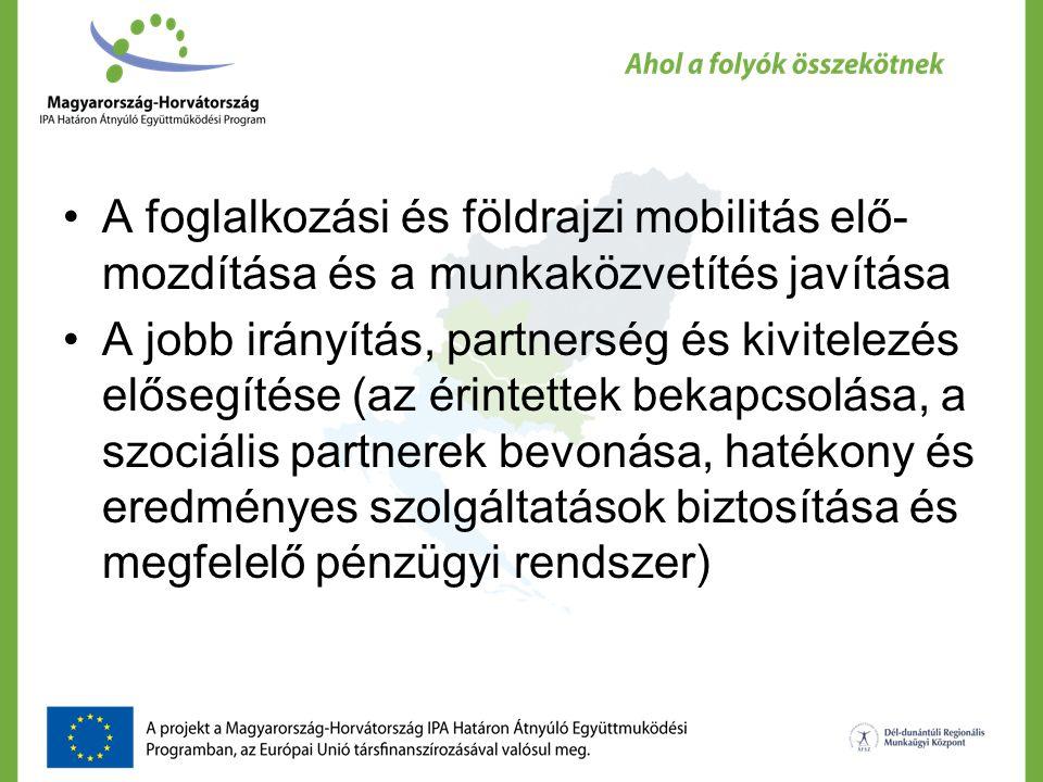 A foglalkozási és földrajzi mobilitás elő- mozdítása és a munkaközvetítés javítása A jobb irányítás, partnerség és kivitelezés elősegítése (az érintet