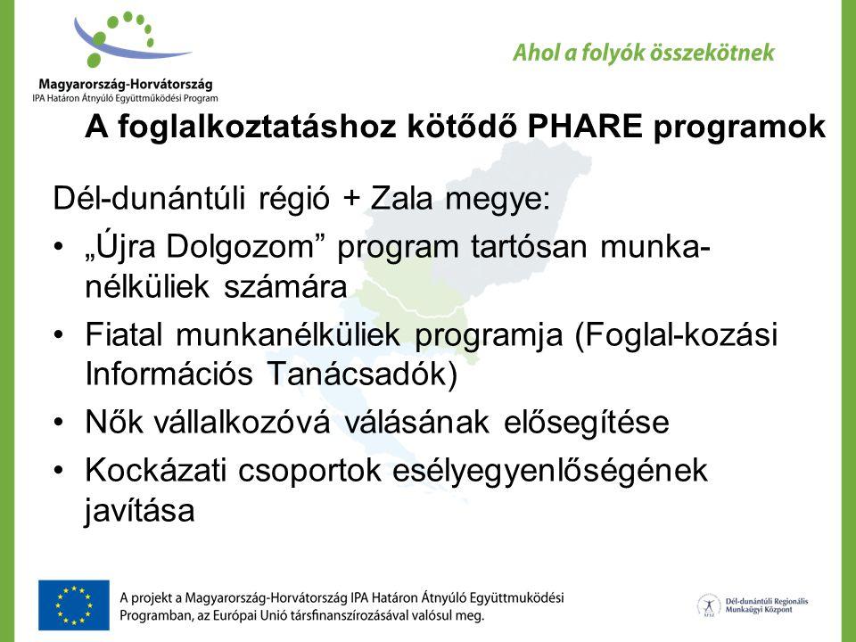"""A foglalkoztatáshoz kötődő PHARE programok Dél-dunántúli régió + Zala megye: """"Újra Dolgozom"""" program tartósan munka- nélküliek számára Fiatal munkanél"""