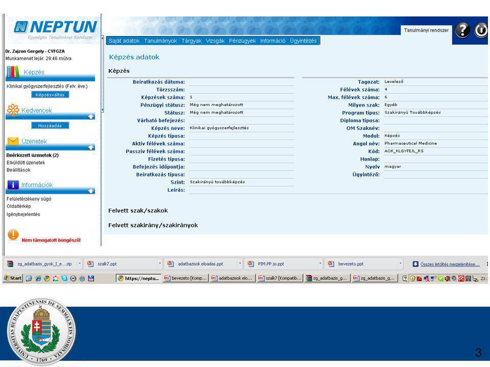 ADATBÁZIS SZERVER Speciális adatbáziskezelő szoftver Nem a kezelői felület biztosítása a cél.