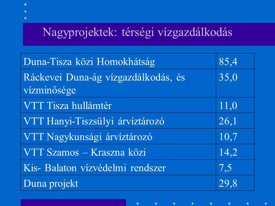 Nagyprojektek: térségi vízgazdálkodás Duna-Tisza közi Homokhátság85,4 Ráckevei Duna-ág vízgazdálkodás, és vízminősége 35,0 VTT Tisza hullámtér11,0 VTT Hanyi-Tiszsülyi árvíztározó26,1 VTT Nagykunsági árvíztározó10,7 VTT Szamos – Kraszna közi14,2 Kis- Balaton vízvédelmi rendszer7,5 Duna projekt29,8