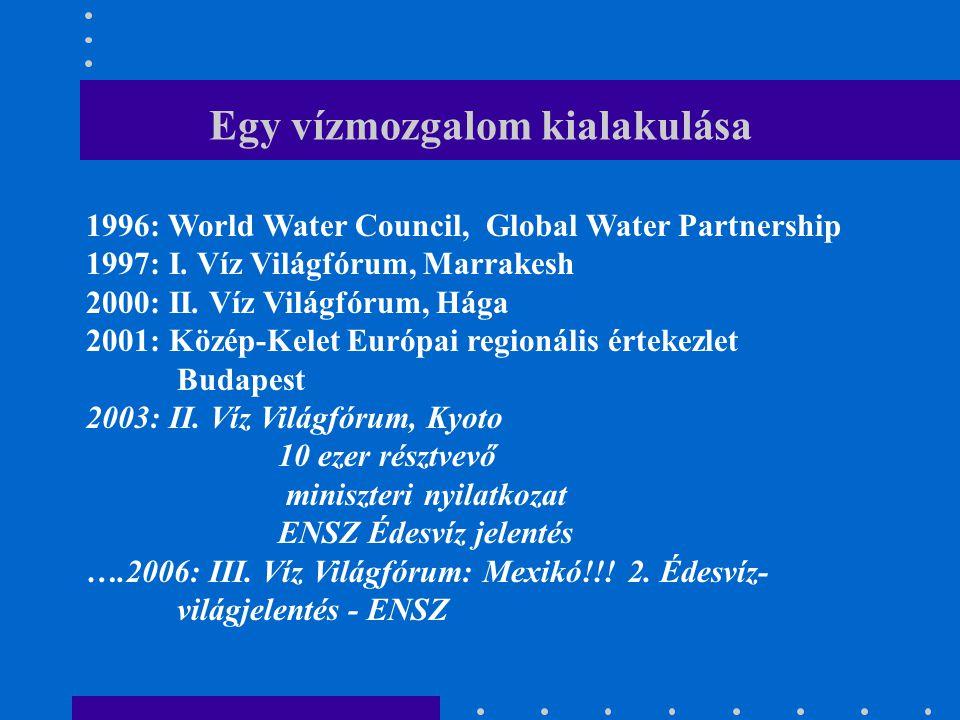 Egy vízmozgalom kialakulása 1996: World Water Council, Global Water Partnership 1997: I. Víz Világfórum, Marrakesh 2000: II. Víz Világfórum, Hága 2001