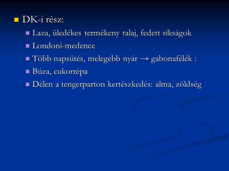 DK-i rész: DK-i rész: Laza, üledékes termékeny talaj, fedett síkságok Laza, üledékes termékeny talaj, fedett síkságok Londoni-medence Londoni-medence