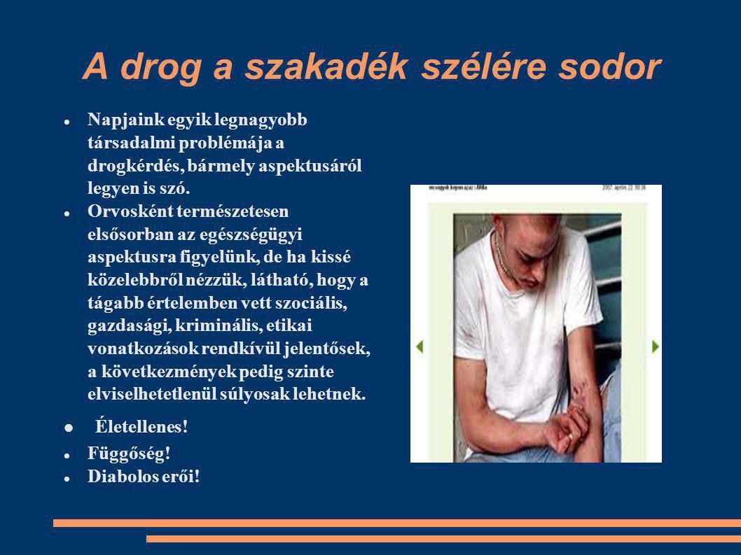 A drog a szakadék szélére sodor Napjaink egyik legnagyobb társadalmi problémája a drogkérdés, bármely aspektusáról legyen is szó.