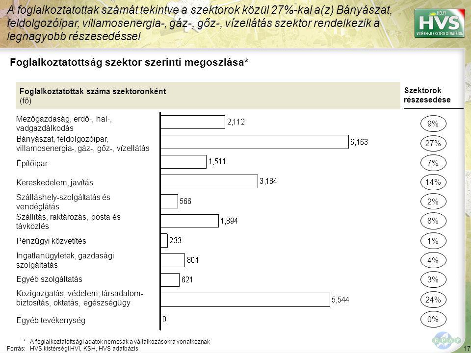 17 Foglalkoztatottság szektor szerinti megoszlása* A foglalkoztatottak számát tekintve a szektorok közül 27%-kal a(z) Bányászat, feldolgozóipar, villa