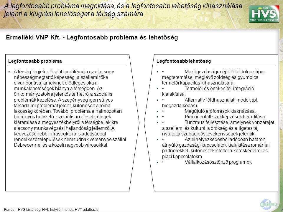 5 Érmelléki VNP Kft. - Legfontosabb probléma és lehetőség A legfontosabb probléma megoldása, és a legfontosabb lehetőség kihasználása jelenti a kiugrá