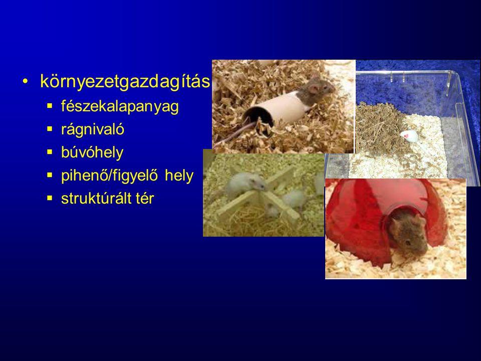 környezetgazdagítás  fészekalapanyag  rágnivaló  búvóhely  pihenő/figyelő hely  struktúrált tér
