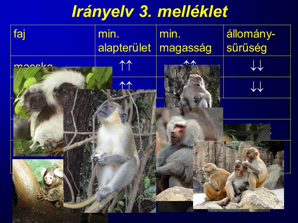 Irányelv 3. melléklet fajmin. alapterület min. magasság állomány- sűrűség macska   kutya  vadászgörényúj adatok főemlősmár-már állatkerti kör