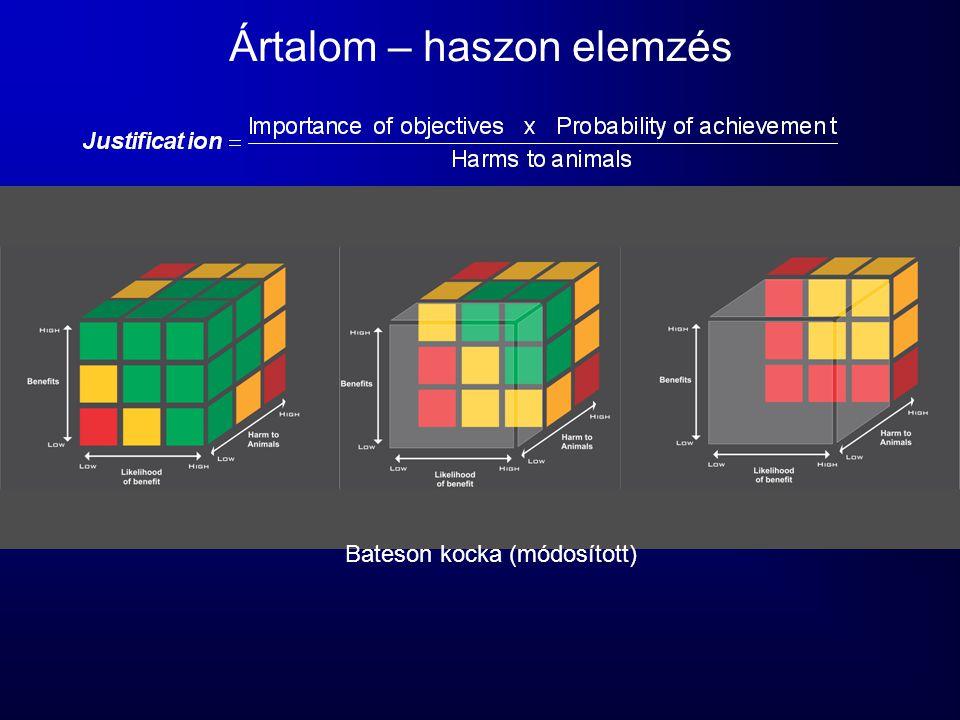 Ártalom – haszon elemzés Bateson kocka (módosított)