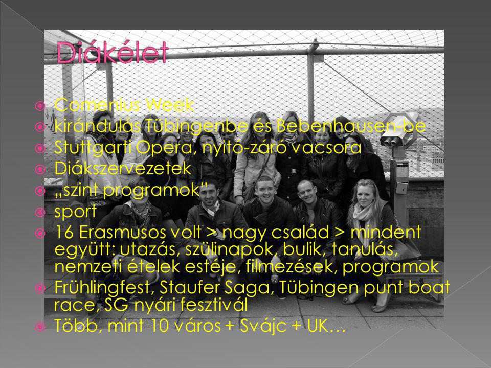 """ Comenius Week  kirándulás Tübingenbe és Bebenhausen-be  Stuttgarti Opera, nyitó-záró vacsora  Diákszervezetek  """"szint programok  sport  16 Erasmusos volt > nagy család > mindent együtt: utazás, szülinapok, bulik, tanulás, nemzeti ételek estéje, filmezések, programok  Frühlingfest, Staufer Saga, Tübingen punt boat race, SG nyári fesztivál  Több, mint 10 város + Svájc + UK…"""