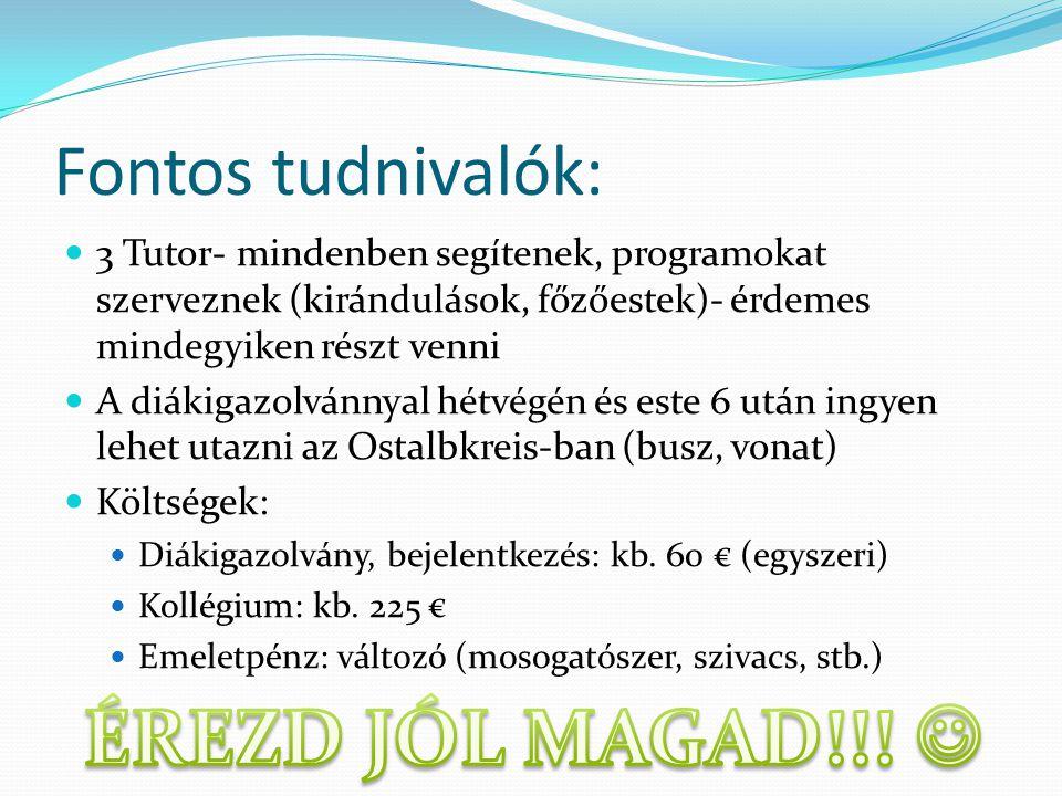 Fontos tudnivalók: 3 Tutor- mindenben segítenek, programokat szerveznek (kirándulások, főzőestek)- érdemes mindegyiken részt venni A diákigazolvánnyal hétvégén és este 6 után ingyen lehet utazni az Ostalbkreis-ban (busz, vonat) Költségek: Diákigazolvány, bejelentkezés: kb.
