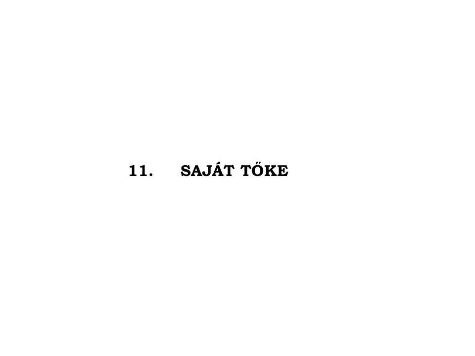 11. SAJÁT TŐKE