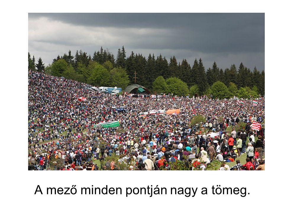 A mező minden pontján nagy a tömeg.