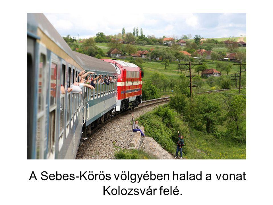 A kolozsvári rendőrök a vonat teljes hosszában felsorakoztak.