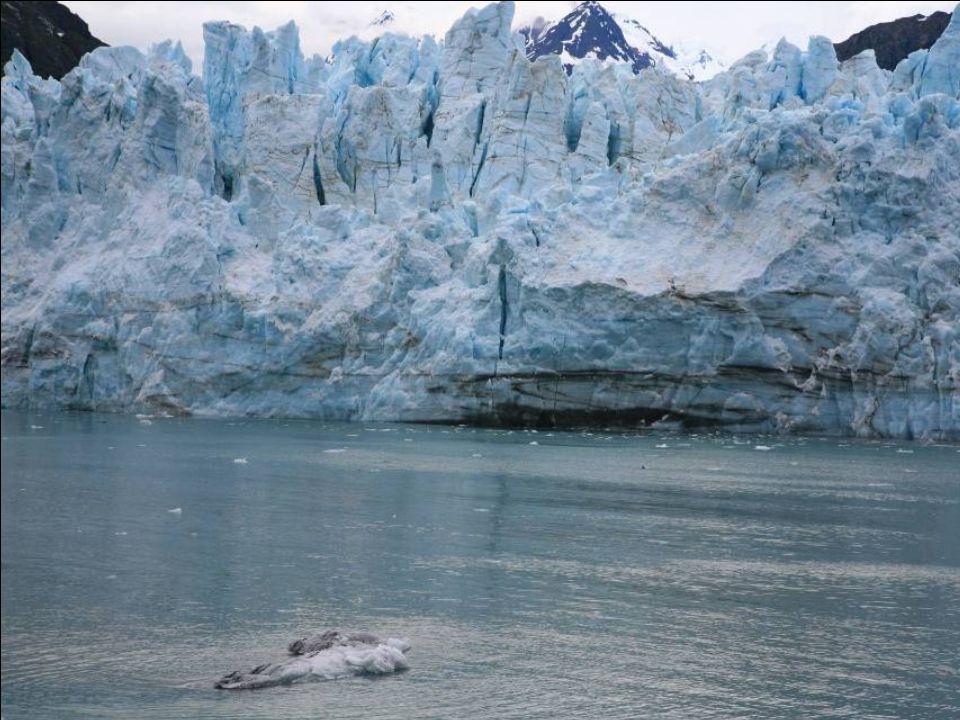 Kirándulás a Glacier Bay Nemzeti Parkba