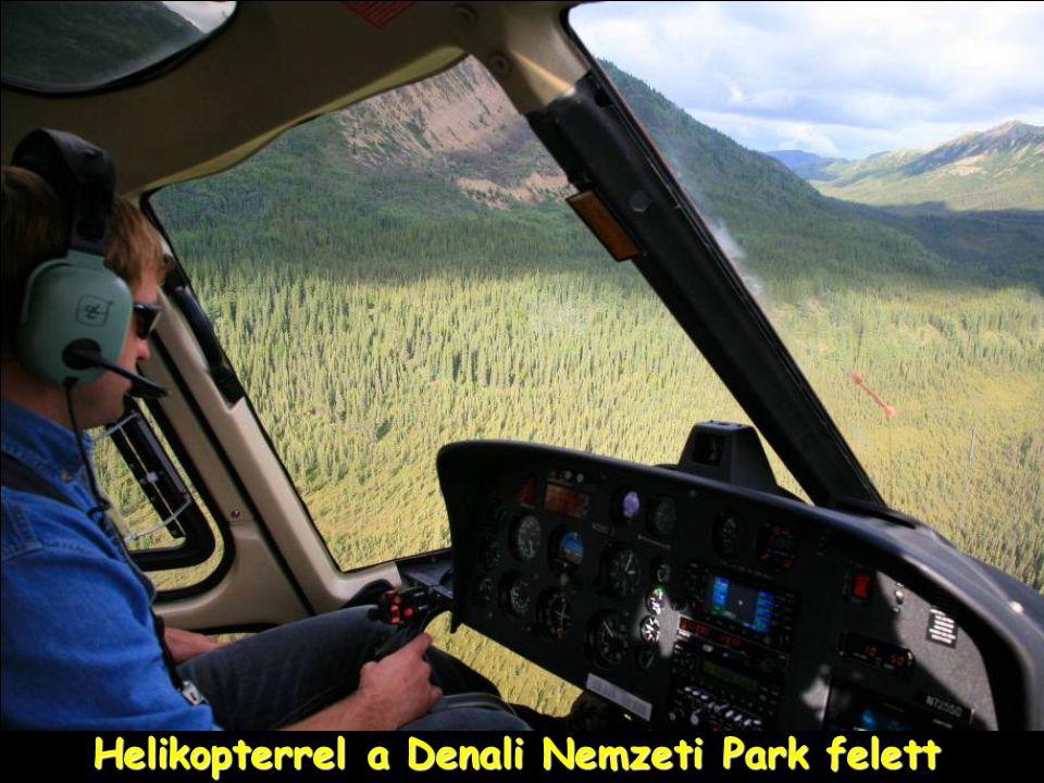 Denali Nemzeti Park