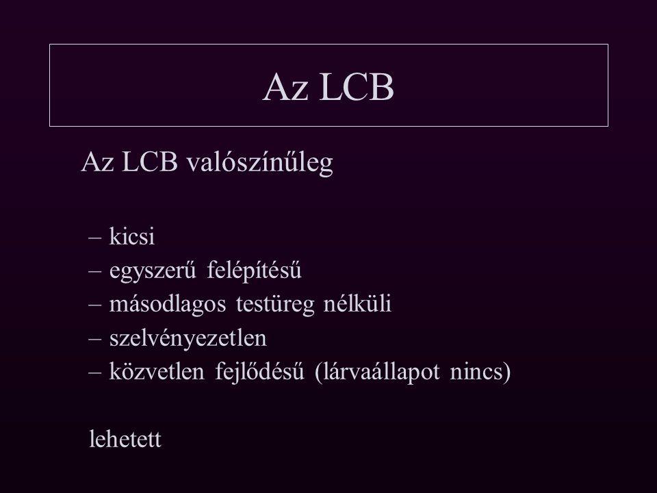 Az LCB 1. Kétoldali szimmteria 2. A/P és D/V tengely 3. mezoderma 4. Idegrendszer elülső központtal
